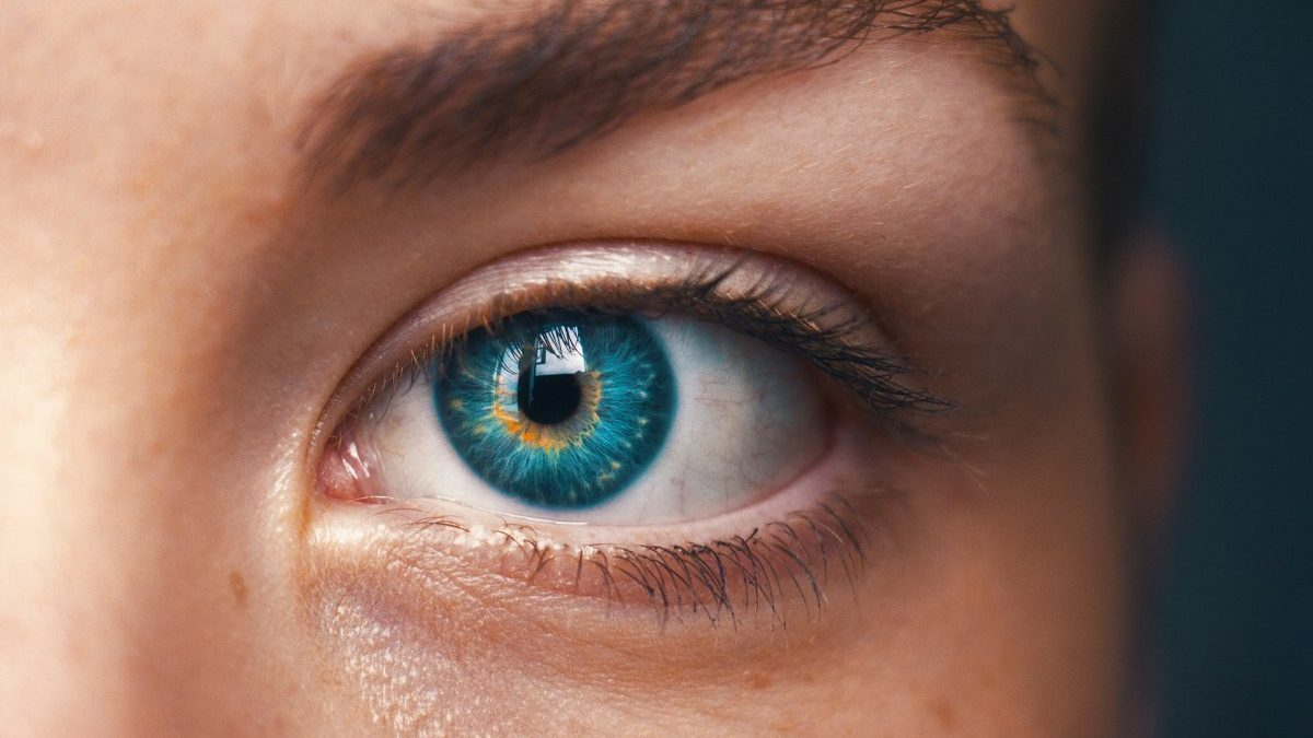 What is the Difference Between EMDR and IEMT?